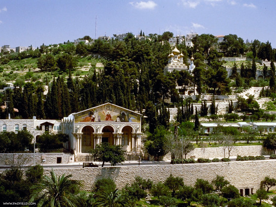Mount-of-Olives-2