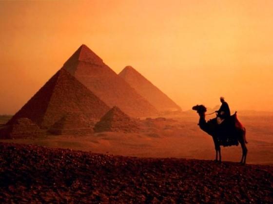 egipet300508_1_266234937_std